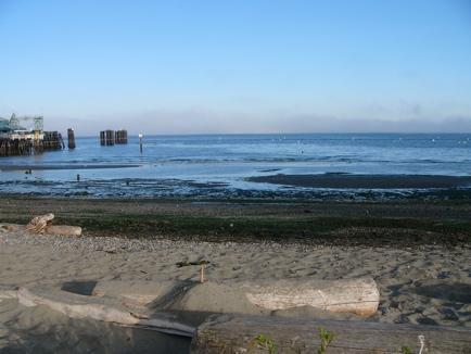 e-beach.JPG