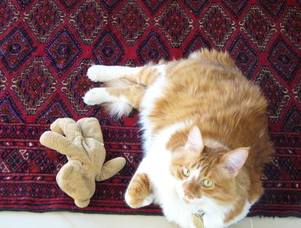 pete-and-bear.JPG