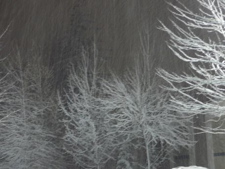 00winterstorm3.jpg