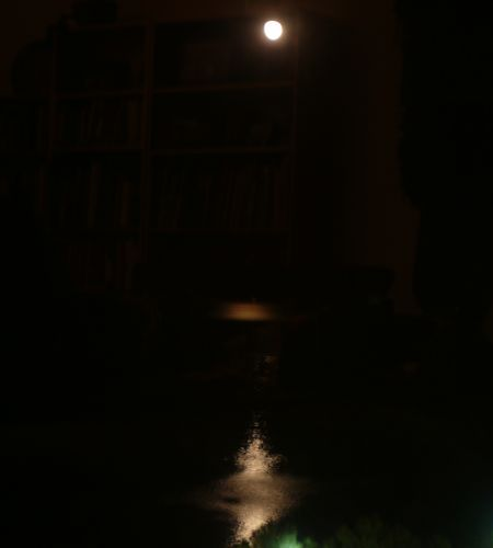 00moonlight.jpg