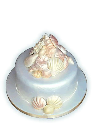 торт ракушка