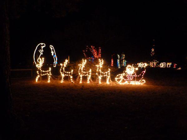 Zoo Lights Pensacola
