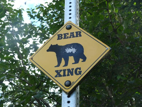 00BearCrossingSign