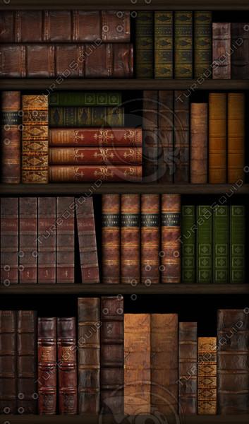 booksonshelf.jpg71edacec-6ab7-4b35-bf92-12e1b6adc53dLarger