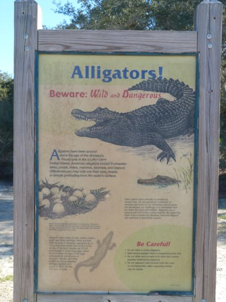 00SignAlligatorInformational