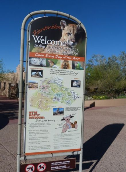 ArizonaSonoraDesertMuseum