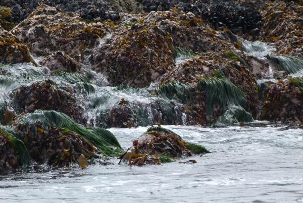 SeaWaterIsland