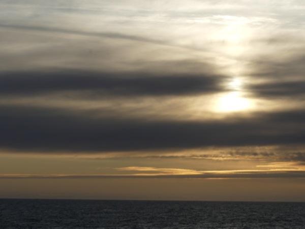 SunsetRey