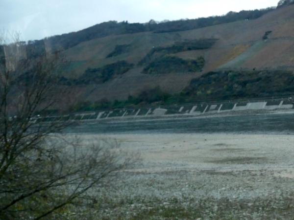 Low Water Rhein